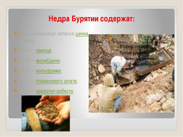 Недра Бурятии содержат: 48% балансовых запасов цинка России, 24%— свинца,...