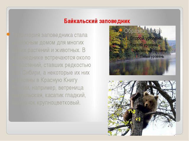 Байкальский заповедник Территория заповедника стала надежным домом для многи...