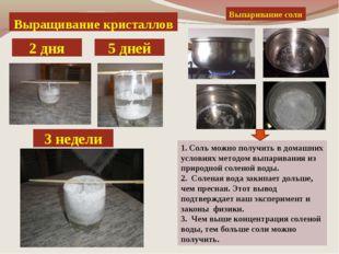 Выращивание кристаллов 2 дня 3 недели 5 дней Выпаривание соли 1. Соль можно п