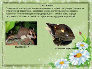 III категория. Редкие виды и популяции, имеющие низкую численность и распрост