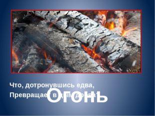 Что, дотронувшись едва, Превращает в дым дрова? Огонь