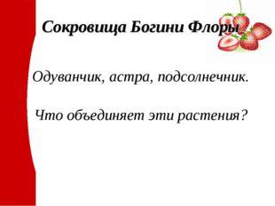 Сокровища Богини Флоры Одуванчик, астра, подсолнечник. Что объединяет эти рас
