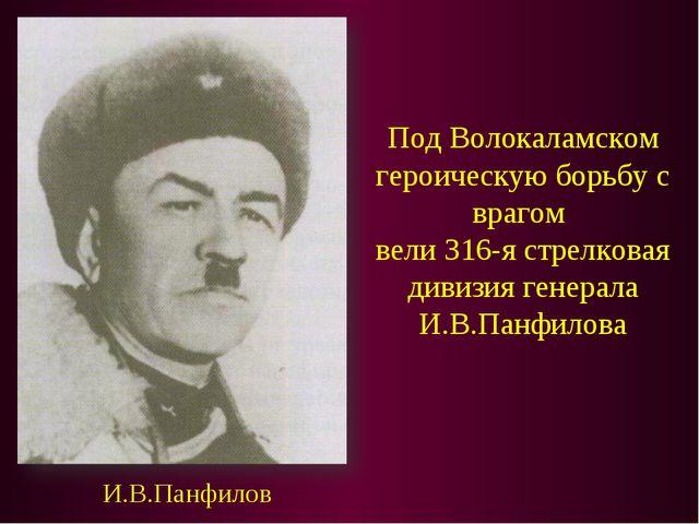 Под Волокаламском героическую борьбу с врагом вели 316-я стрелковая дивизия г...