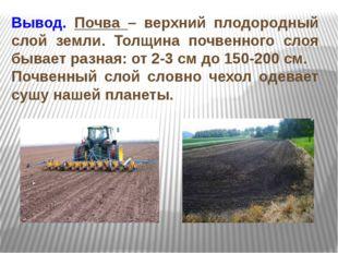 Вывод. Почва – верхний плодородный слой земли. Толщина почвенного слоя бывает
