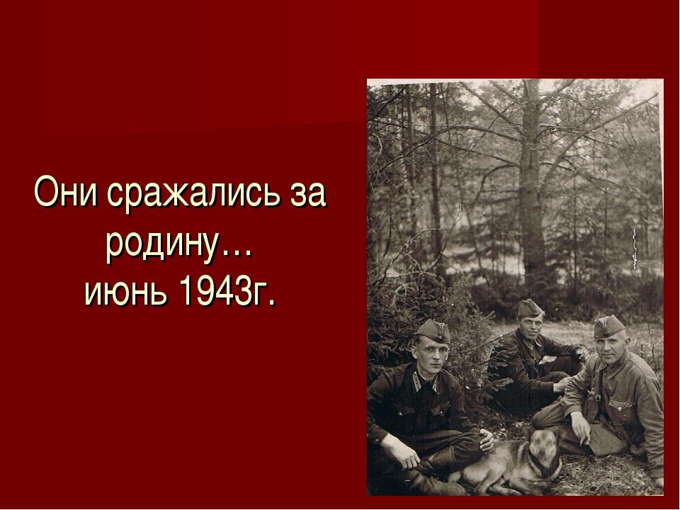 Они сражались за родину… июнь 1943г.