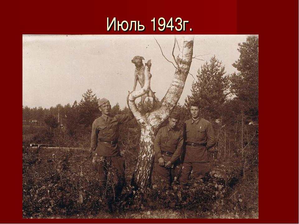 Июль 1943г.