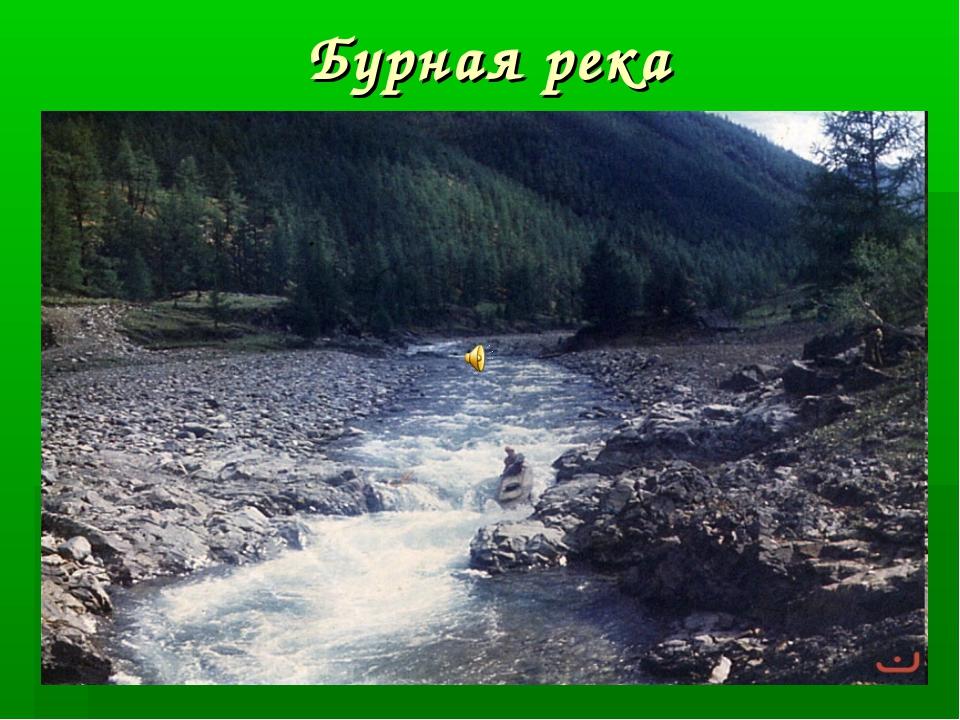 Бурная река