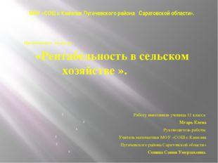 МОУ «СОШ с Камелик Пугачевского района Саратовской области». Презентация на т