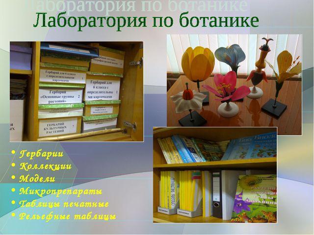 Гербарии Коллекции Модели Микропрепараты Таблицы печатные Рельефные таблицы