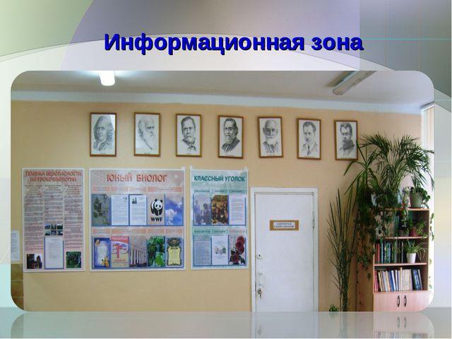 Информационная зона
