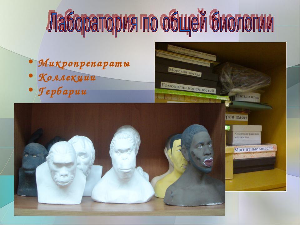 Микропрепараты Коллекции Гербарии