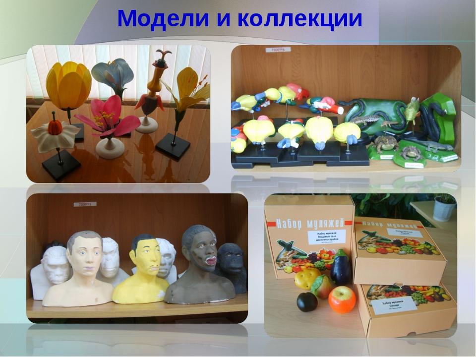 Модели и коллекции