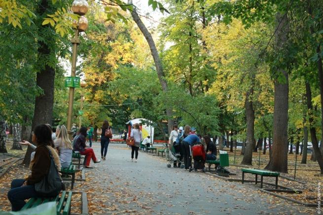 В деревню, в глушь, в Саратов. Часть II Экскурсия по городу Курорты мира