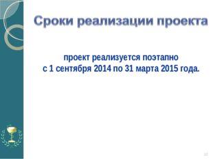 * проект реализуется поэтапно с 1 сентября 2014 по 31 марта 2015 года.