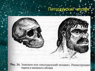 Пилтдаунский человек http://5-bal.ru/pars_docs/refs/12/11427/11427_html_m3dbd