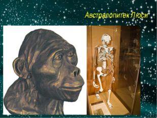 Австралопитек Люси http://img.getglue.com/topics/australopithecus/lucy/normal