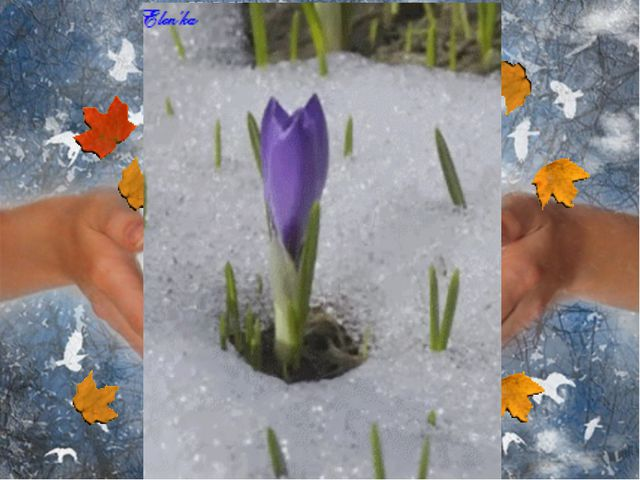 http://img01.chitalnya.ru/upload2/237/574585056863725184.jpg- дом http://s50....