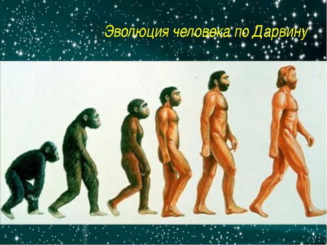 Эволюция человека по Дарвину http://www.factruz.ru/history_mistery/images/nea...