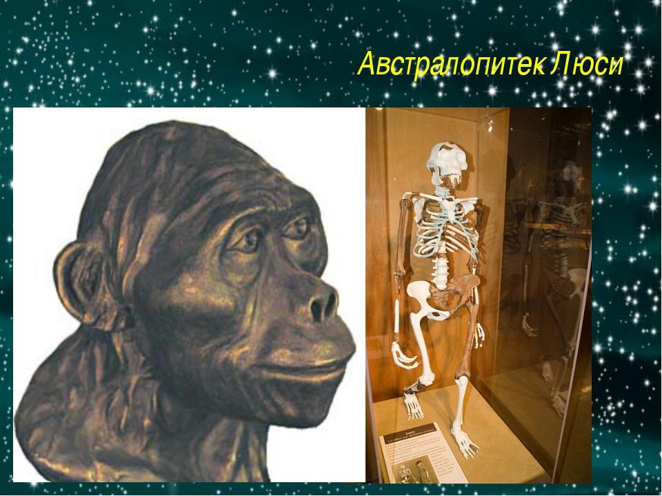 Австралопитек Люси http://img.getglue.com/topics/australopithecus/lucy/normal...