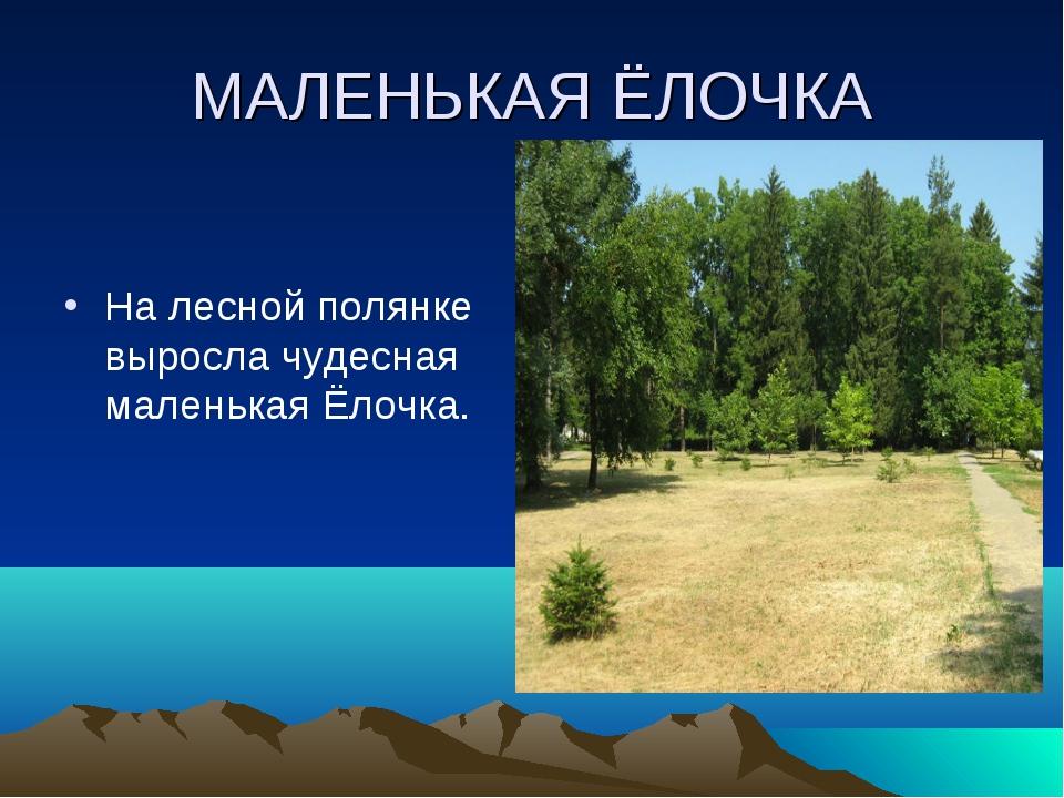 МАЛЕНЬКАЯ ЁЛОЧКА На лесной полянке выросла чудесная маленькая Ёлочка.