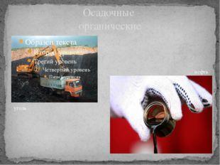 Осадочные органические уголь нефть