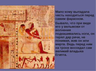 Мало кому выпадала честь находиться перед самим фараоном. Бывало, что при вид