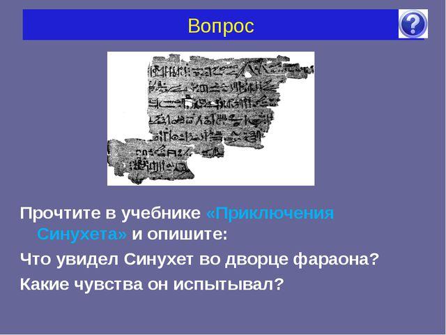 Вопрос Прочтите в учебнике «Приключения Синухета» и опишите: Что увидел Синух...
