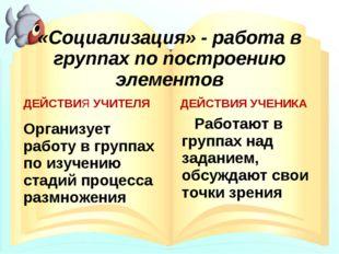 «Социализация» - работа в группах по построению элементов ДЕЙСТВИЯ УЧИТЕЛЯ Ор