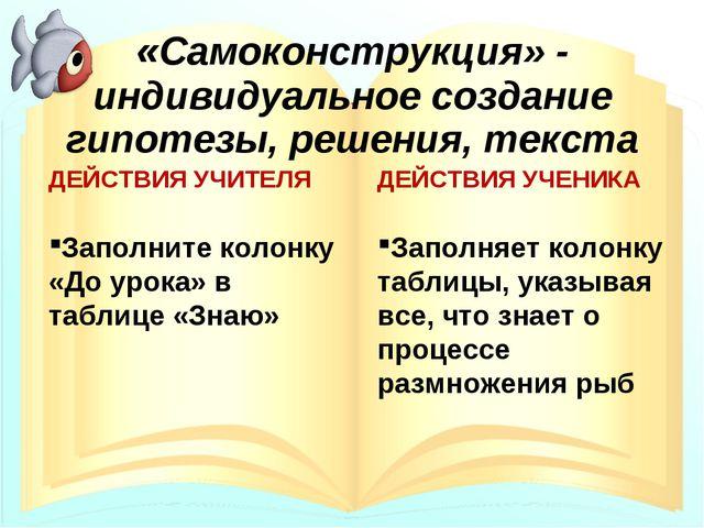 «Самоконструкция» - индивидуальное создание гипотезы, решения, текста ДЕЙСТВИ...