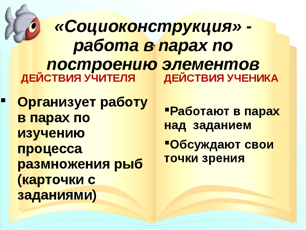 «Социоконструкция» - работа в парах по построению элементов ДЕЙСТВИЯ УЧИТЕЛЯ...