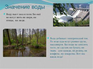Значение воды Воду пьют леса и поля. Без неё не могут жить ни звери, ни птицы