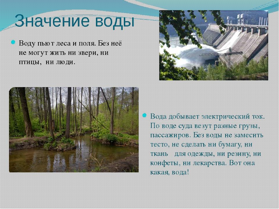 Значение воды Воду пьют леса и поля. Без неё не могут жить ни звери, ни птицы...