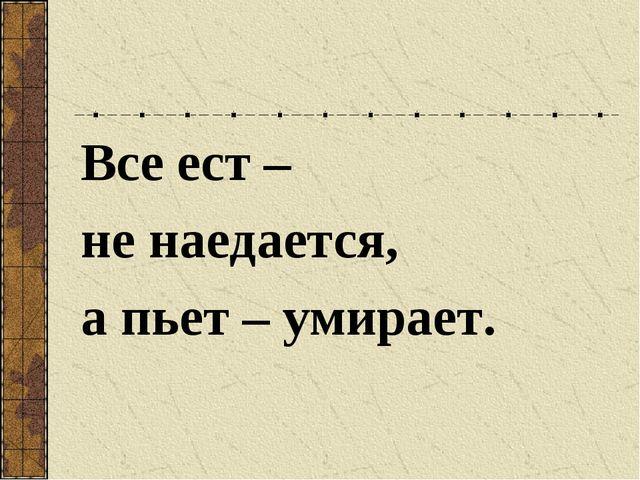 Все ест – не наедается, а пьет – умирает.