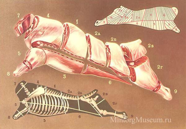 http://www.mintorgmuseum.ru/images/vocabulary/goviadina.jpg