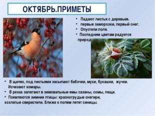 ОКТЯБРЬ.ПРИМЕТЫ Падают листья с деревьев. первые заморозки, первый снег. Опус