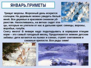 ЯНВАРЬ.ПРИМЕТЫ Трещат морозы. Морозный день искрится солнцем. На деревьях мож