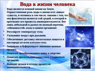 Вода в жизни человека Вода является основой жизни на Земле. Первостепенная р