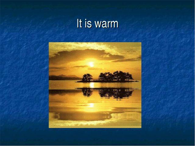 It is warm