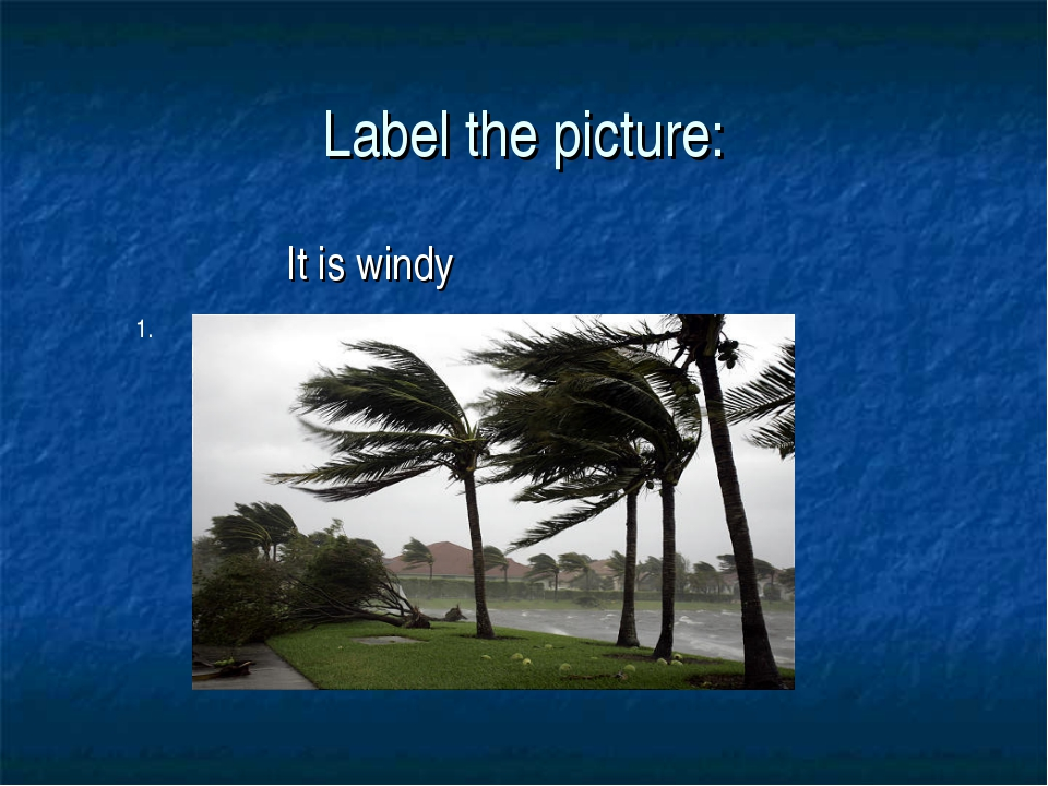 Label the picture: It is windy 1.