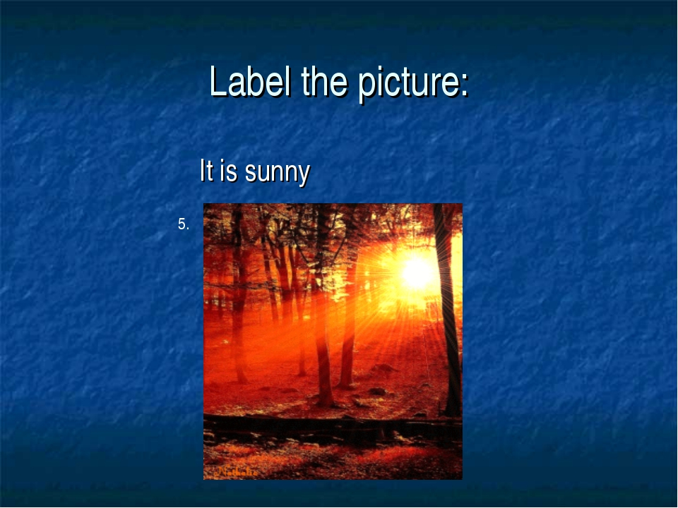 Label the picture: It is sunny 5.