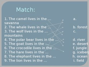 Match: 1. The camel lives in the … a. savanna 2. The whale lives in the … b.