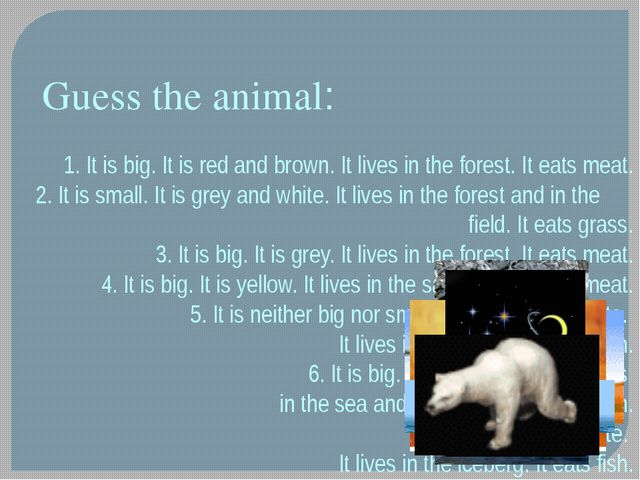 1. It is big. It is red and brown. It lives in the forest. It eats meat. 2. I...