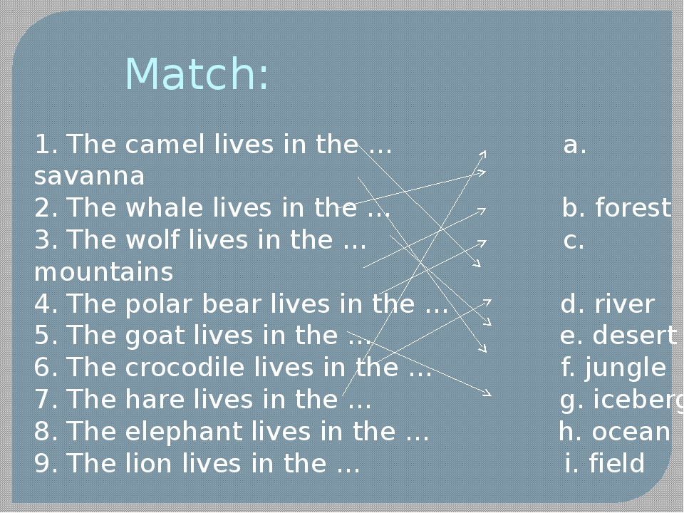 Match: 1. The camel lives in the … a. savanna 2. The whale lives in the … b....