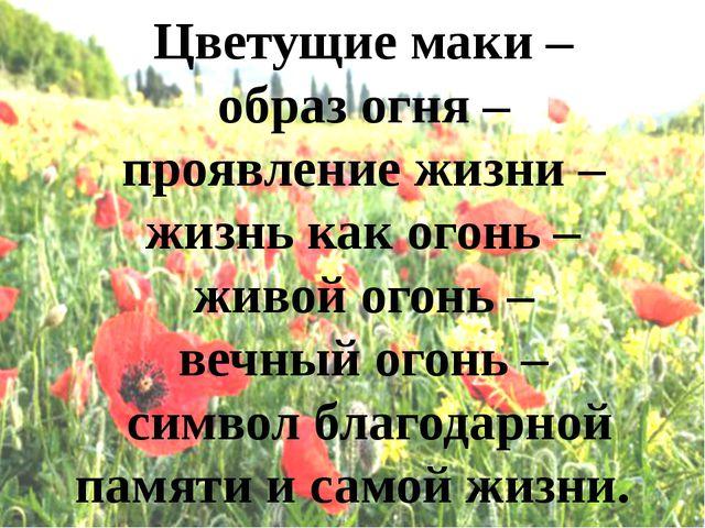Цветущие маки – образ огня – проявление жизни – жизнь как огонь – живой огон...