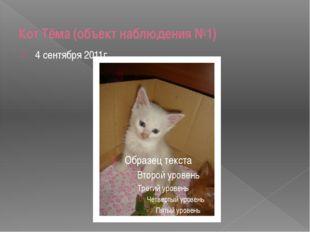 Кот Тёма (объект наблюдения №1) 4 сентября 2011г.