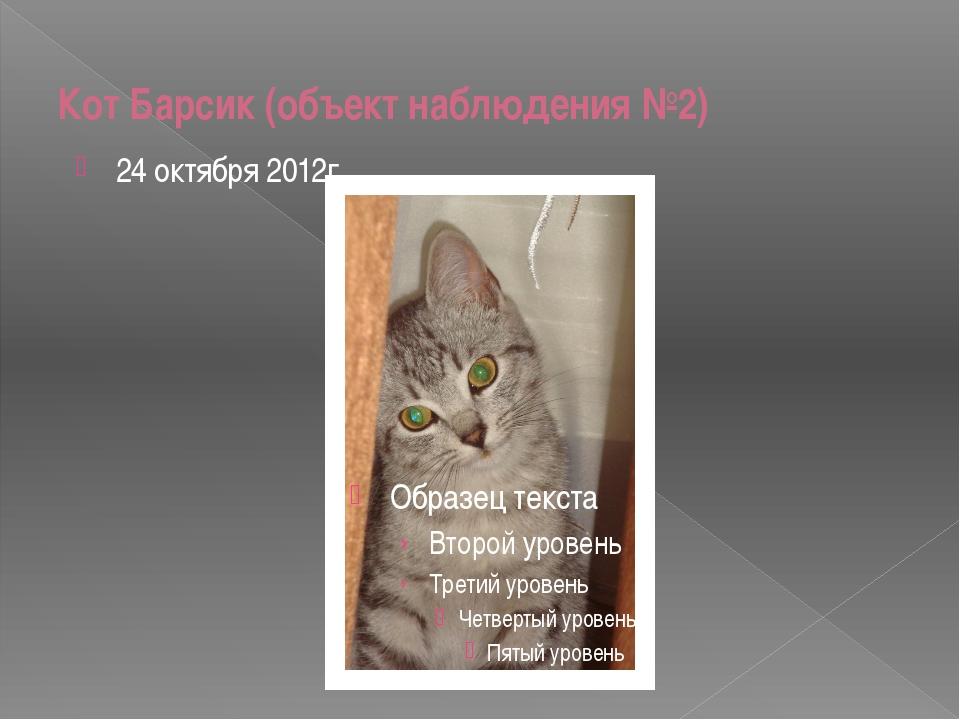 Кот Барсик (объект наблюдения №2) 24 октября 2012г.
