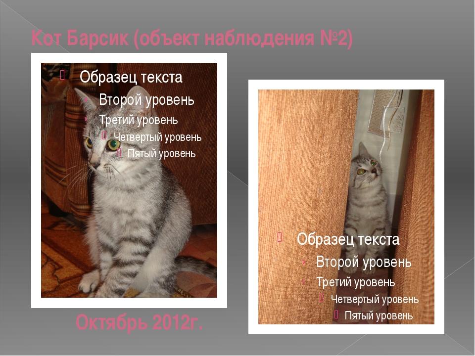 Кот Барсик (объект наблюдения №2) Октябрь 2012г.