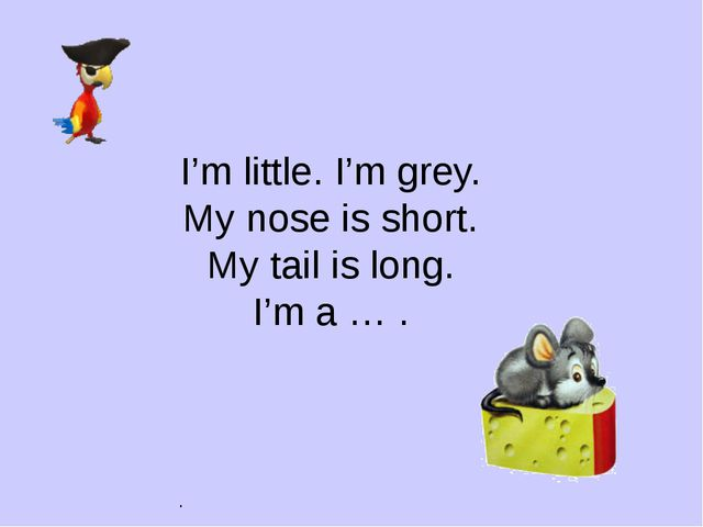 . I'm little. I'm grey. My nose is short. My tail is long. I'm a … .