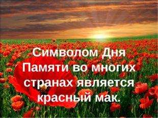 Символом Дня Памяти во многих странах является красный мак. Символом Дня Па