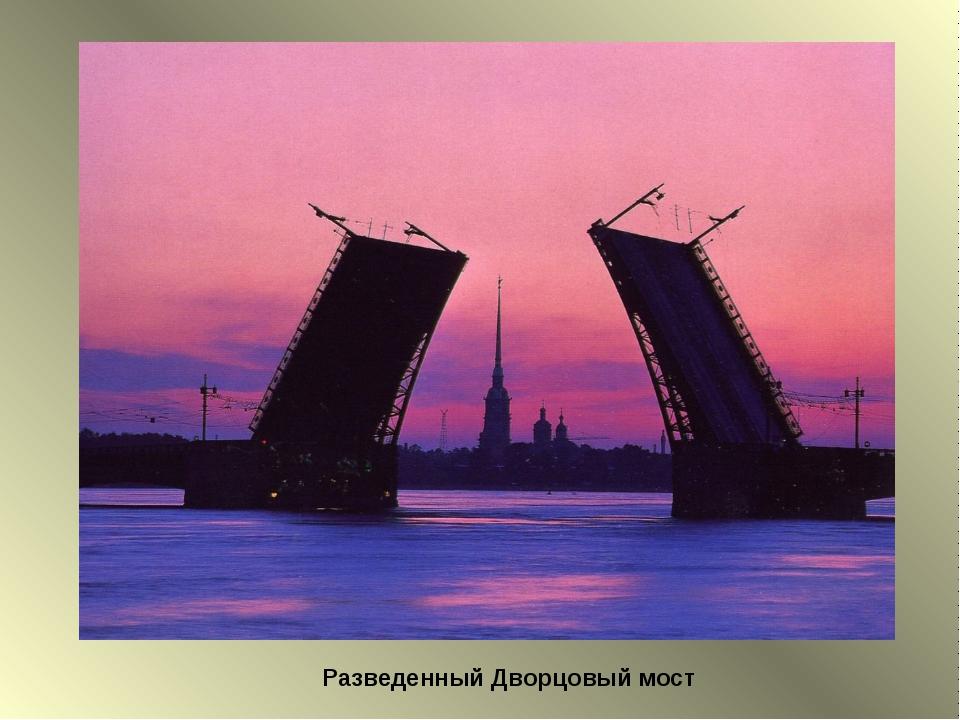 Разведенный Дворцовый мост